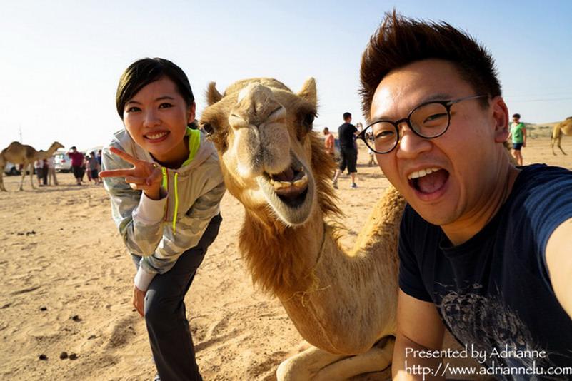 【環遊歐洲68天】Day3-1 阿布達比Abu Dhabi。絕不能錯過的沙漠行程 ─ 沙漠衝沙 Desert Safari (上)