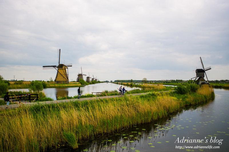 【環遊歐洲68天】Day17-2 鹿特丹Rotterdam擁有18座風車的小孩堤防(kinderdijk) & 立體方塊屋(Cubic  House)