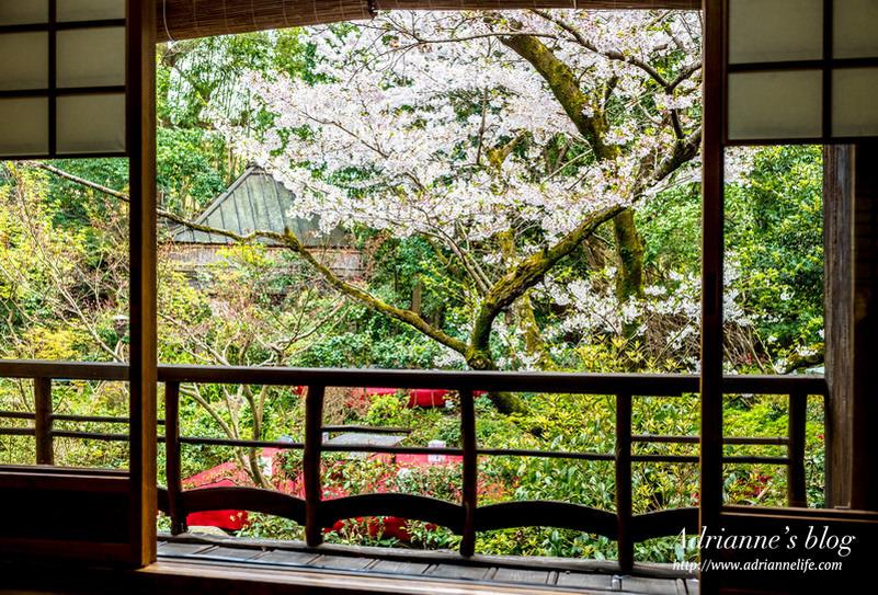 【京都美食】 邊品嚐380年的総本家 ゆどうふ 奥丹清水湯豆腐,邊欣賞絕美庭園風景!