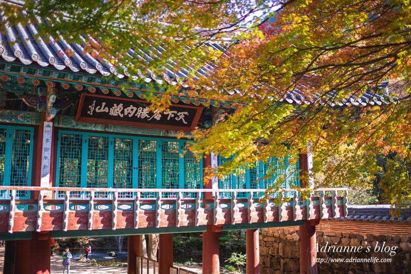 【韓國必去賞楓景點】首爾近郊賞楓的好選擇,內藏山深度賞楓一日遊!