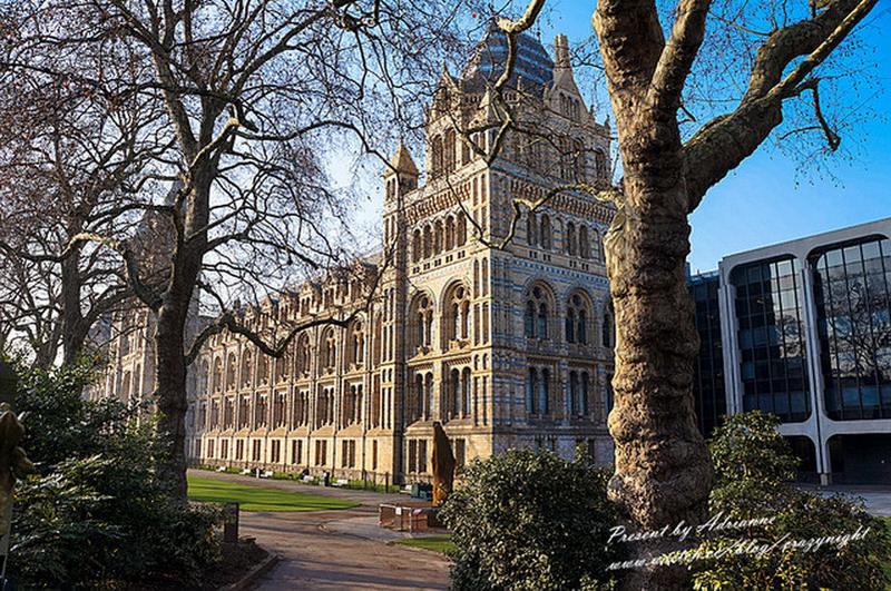 【英國UK ♥ 英格蘭倫敦】Day15-2 去倫敦絕對不能錯過的免費博物館 ─ 自然歷史博物館 → V&A博物館