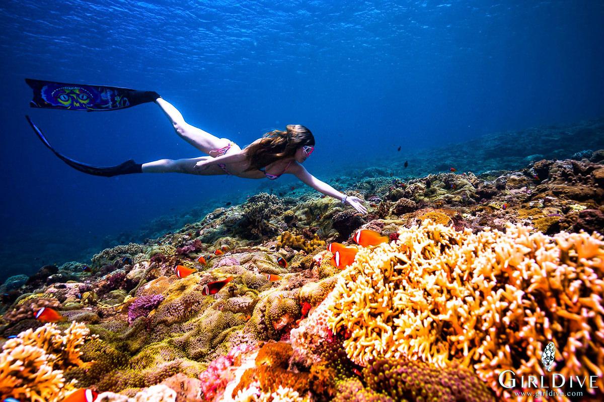 [墾丁自由潛水]墾丁美人魚學校-優雅潛進藍色大海!女生必來自由潛水體驗x超專業水中攝影