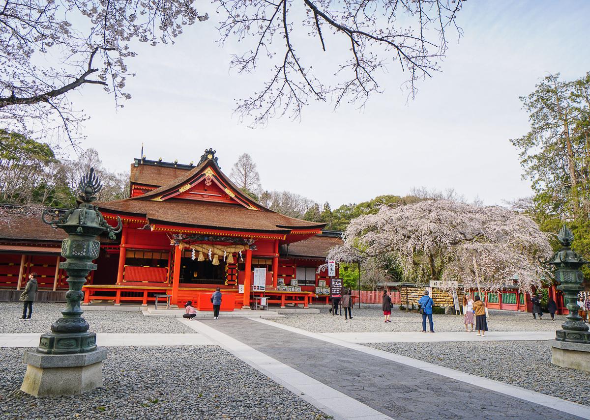 [靜岡旅遊]富士山本宮淺間大社-世界文化遺產~富士山腳下的千年古老神社!靜岡櫻花景點推薦