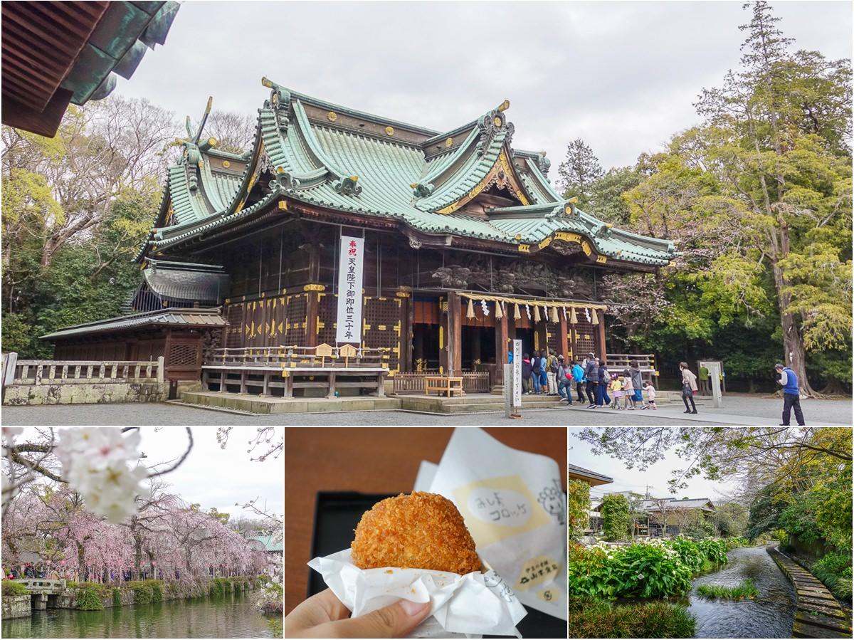 [靜岡旅遊]三嶋市一日散策:三嶋大社賞櫻、源兵衛川散步、大啖好吃可樂餅