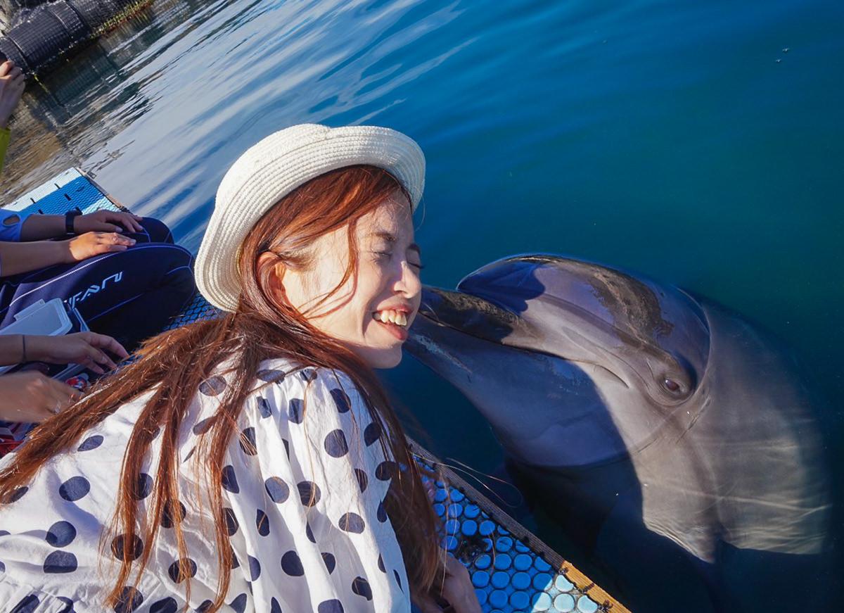 [愛媛景點推薦]Dolphin Farm Shimanami-與海豚近距離接觸!親親抱抱都來~