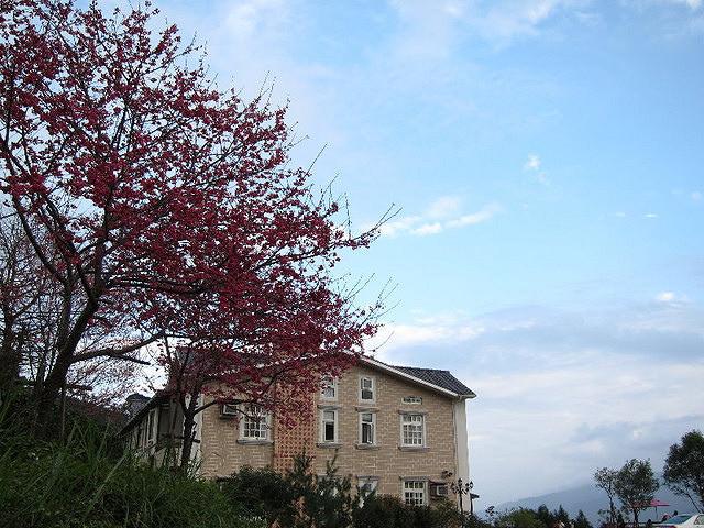 [宜蘭]坐看雲海賞山景-雅廬景觀渡假別墅