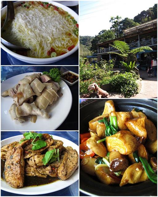 [台北石碇]小農莊嚐養生野菜-九寮坡農莊