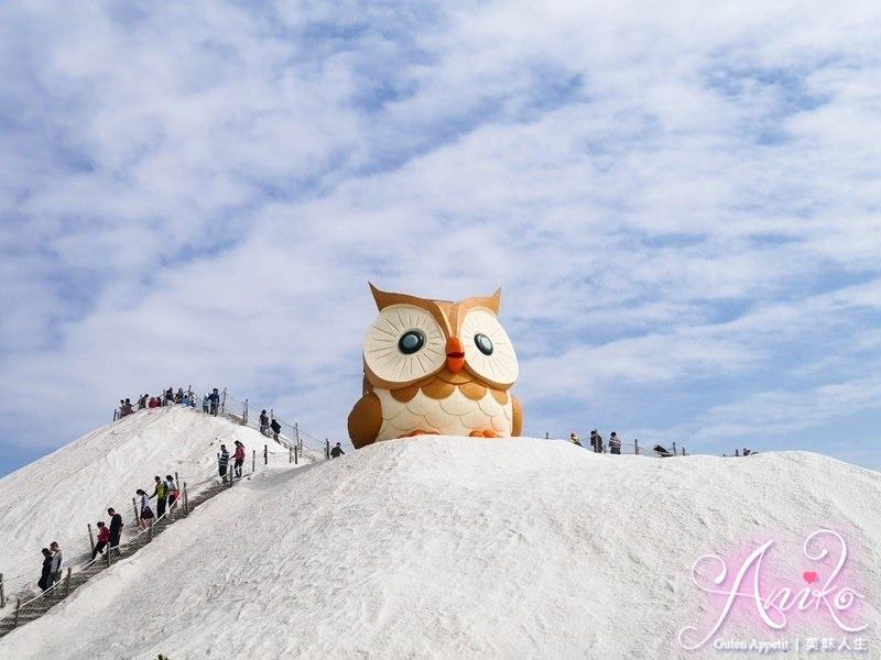 【台南旅遊】七股鹽山。雪地上出現超萌巨大貓頭鷹!陪大家一起過年