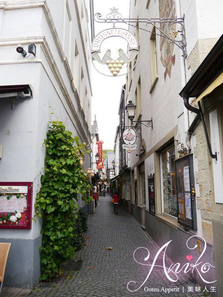 【2013❤德國】開朗少女12天的進擊冒險。呂德斯海姆Rüdesheim斑鳩小巷。萊茵河畔邊的葡萄酒小鎮(上)
