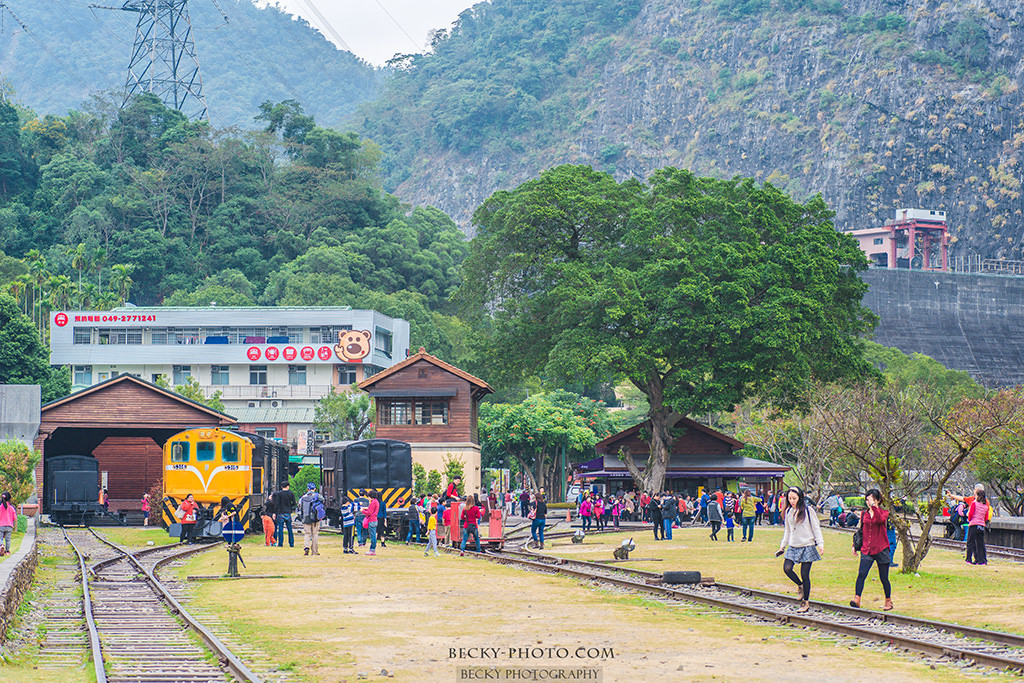 2015.Dec Checheng Station @Nantou 南投車埕車站