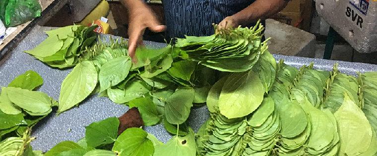 馬爾地夫食物-檳榔