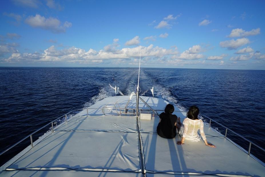 馬爾地夫,居民島,Thinadhoo,提納度,護士鯊,夜間浮潛,plumeria