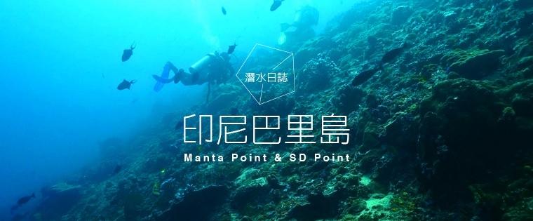 潛水日誌。印尼巴里島 Manta Point & SD Point