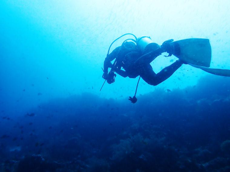 潛點介紹。薄荷島巴里卡薩周邊潛點