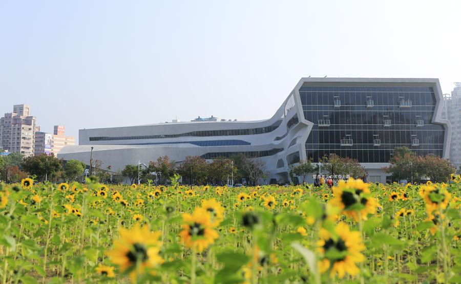 台中南區│國立公共資訊圖書館-到台中圖書館看書順便賞花拍照.復興建成營區空地變身繽紛花海
