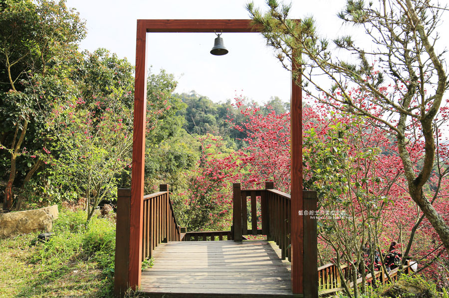 20180222013319 18 - 沐心泉休閒農場-來沐心泉被滿滿的盛開櫻花包圍吧