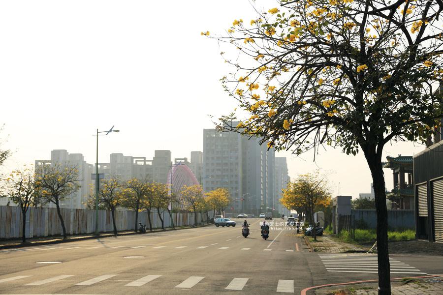 20180304003247 29 - 廍子公園-風鈴木從情人橋一路綻放到台中最美黃金公園裡