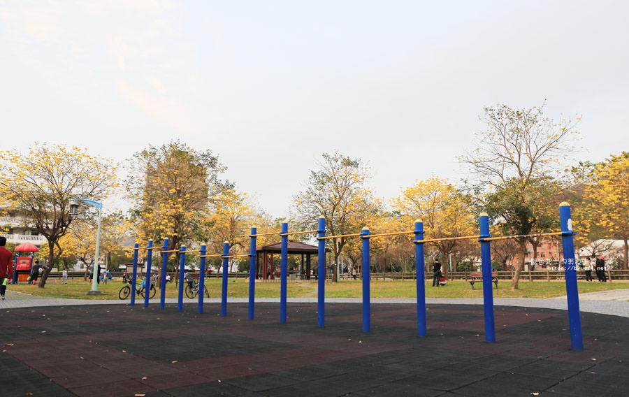 20180304003310 81 - 廍子公園-風鈴木從情人橋一路綻放到台中最美黃金公園裡