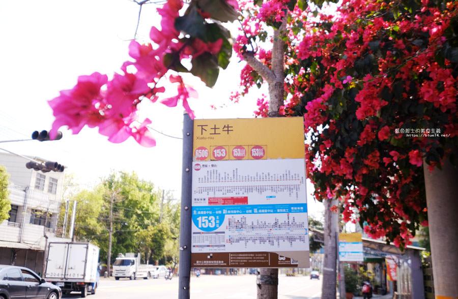 20180317000431 74 - 桃紅浪漫九重葛花牆點綴了公車站.等車也很唯美