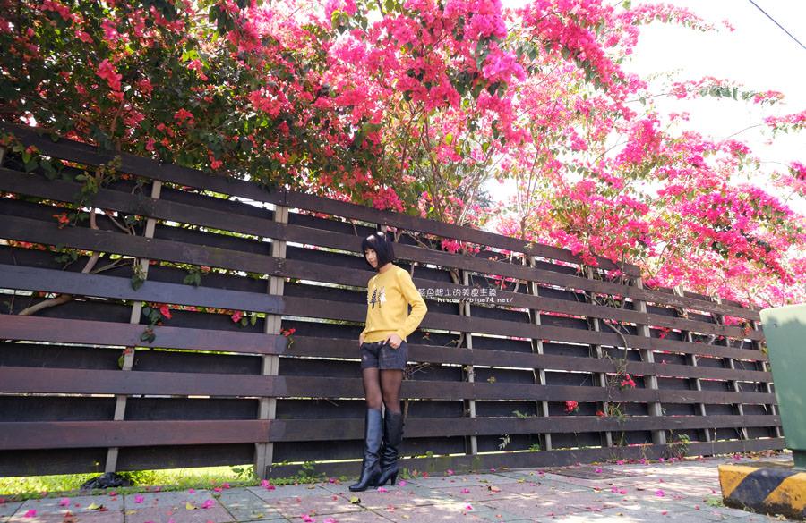 20180317000450 65 - 桃紅浪漫九重葛花牆點綴了公車站.等車也很唯美
