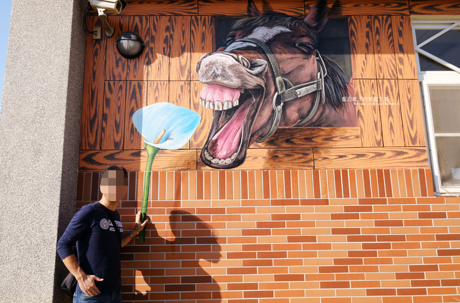 20180322020847 35 - 后里舊社里彩繪村-農村社區中尋找花現幸福3D立體彩繪