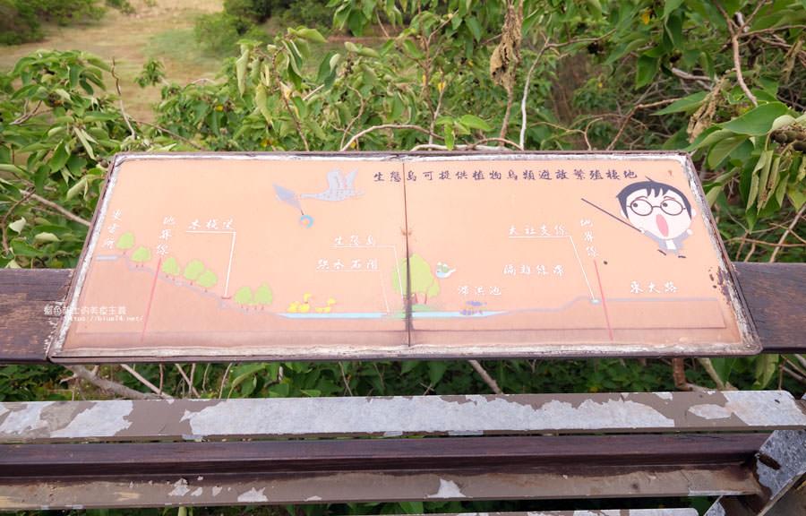 20180415012309 17 - 東大公園-中科秘境.鮮豔九重葛花牆爆開.裡面還有諾亞方舟步道可悠閒散步