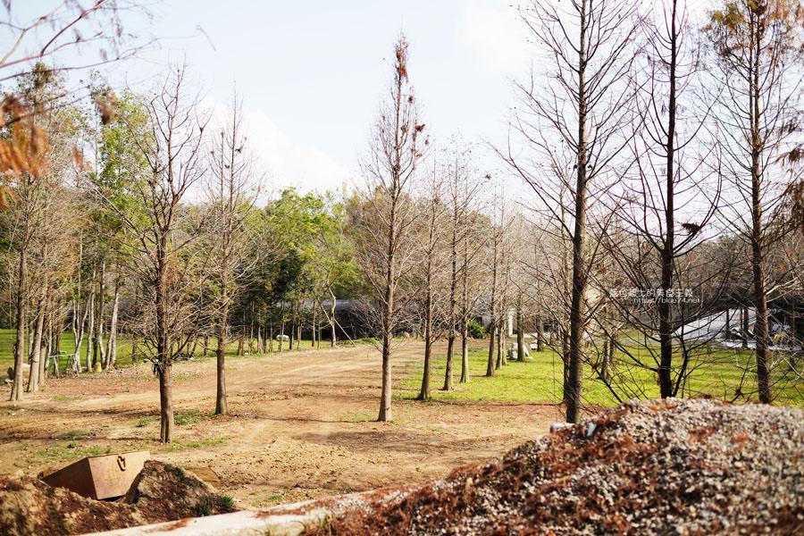 20190226144102 49 - 松之戀-近400株落羽松森林和湖岸景觀,賞櫻之後來份下午茶吧