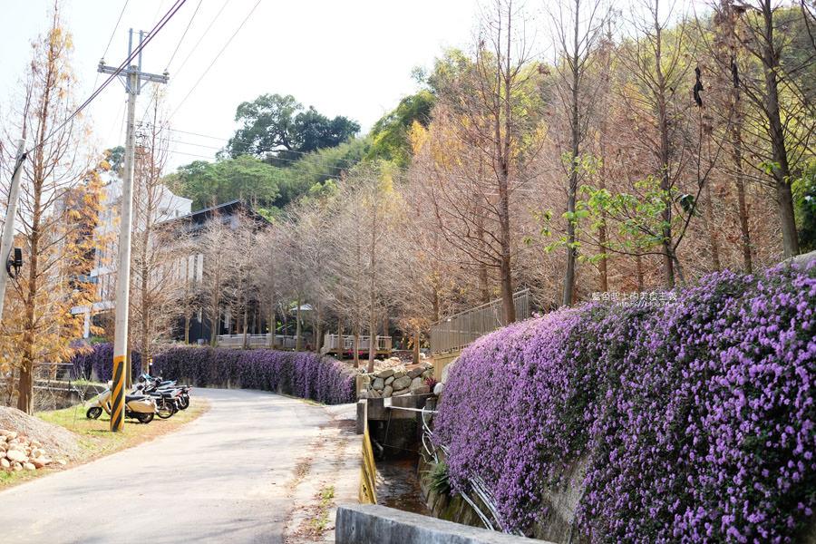 20190226144104 79 - 松之戀-近400株落羽松森林和湖岸景觀,賞櫻之後來份下午茶吧