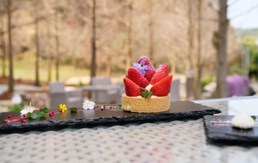 20190226144110 53 - 松之戀-近400株落羽松森林和湖岸景觀,賞櫻之後來份下午茶吧