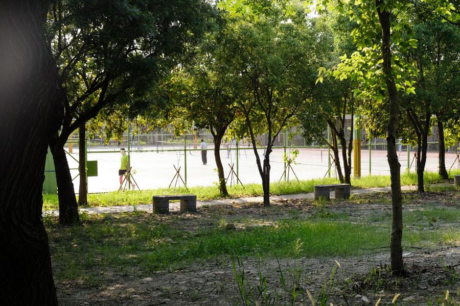 20190609025415 37 - 大肚運動公園-足球造型溜滑梯、籃球場、網球場、遊樂器材,還有一片綠油油草地,大肚萬興宮對面