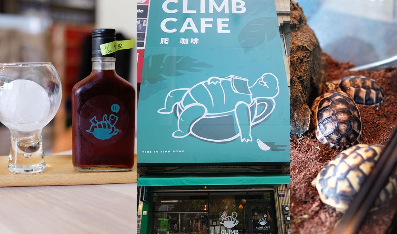 台中北區│爬咖啡CLIMB CAFE-喝咖啡長知識,遇見陸龜和球蟒及藍舌蜥的午茶時光
