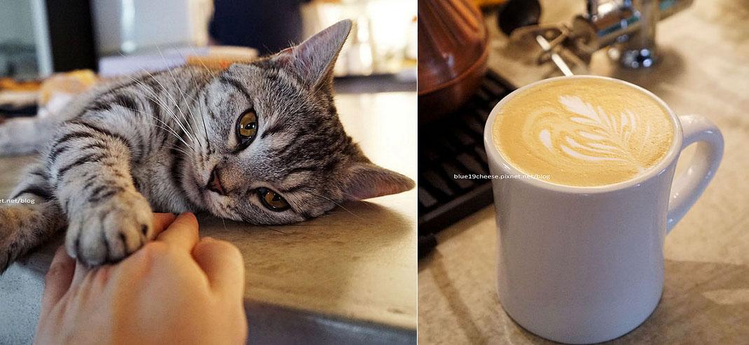 【台中西屯】好日咖啡-室內裝潢服務,慵懶折耳店貓妹妹,逢甲隱密巷弄咖啡館