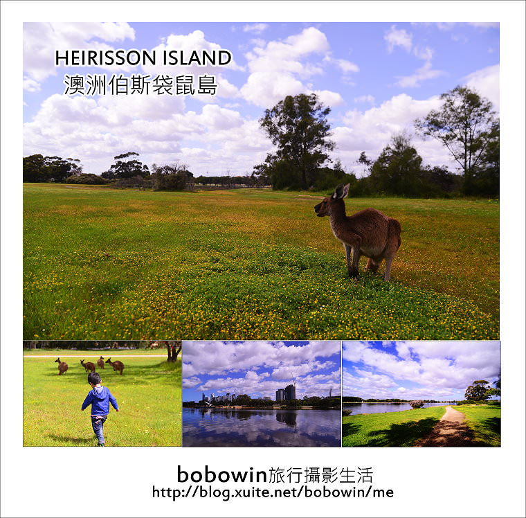 [ 澳洲伯斯] Perth HEIRISSON ISLAND 袋鼠島