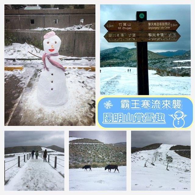【台北.陽明山】- 破紀錄的超強寒流.銀白色的陽明山.賞雪紀錄(2016.01.24)