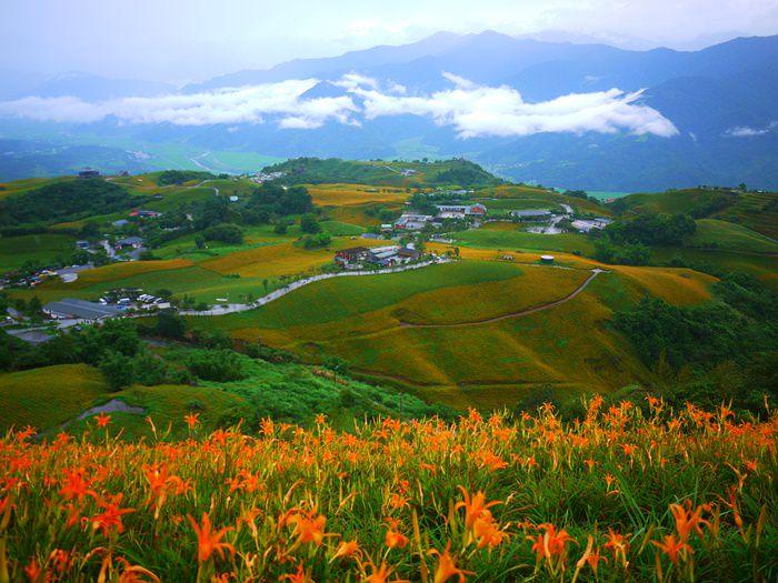 【花蓮.富里】雲霧中的六十石山.季節限定的金針花之美 (2013.08.31)