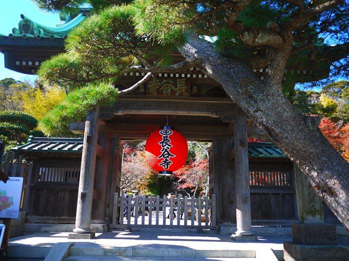 【13 秋日.鎌倉散策 】- 絢爛秋楓下的長谷寺