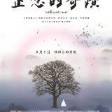 Movie, Walk with Me(英國.法國.美國) / 正念的奇蹟(台) / 与我同行(網), 電影海報, 台灣