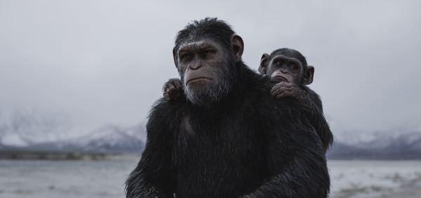 Movie, War For The Planet Of The Apes(美國) / 猩球崛起:終極決戰(台) / 猩球崛起3:终极之战(中) / 猿人爭霸戰:猩凶巨戰(港), 電影劇照