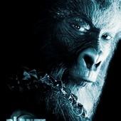 Movie, Planet of the Apes(美國) / 決戰猩球(台) / 猿人爭霸戰(港), 電影海報, 美國, 角色海報