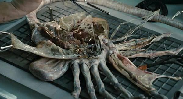 Movie, Aliens(美國.英國) / 異形2(台), 電影劇照