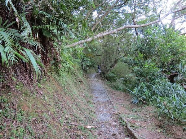 望古賞瀑步道