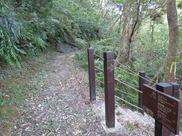 望古賞瀑步道, 岔路