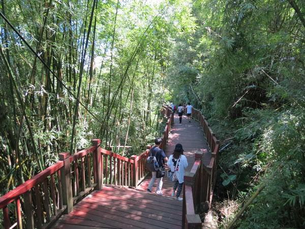 十分瀑布公園, 木棧道