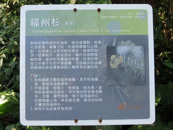 十分瀑布公園, 木棧道, 植物解說牌