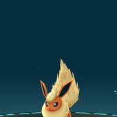 App, Pokémon GO, 秘技, 伊布改名進化08