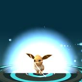 App, Pokémon GO, 秘技, 伊布改名進化12
