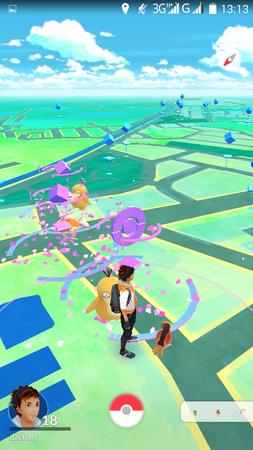 App, Pokémon GO, 規則測試2, 寶可夢數量