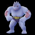 APP, Pokémon GO, 寶可夢圖片, #067豪力/Machoke