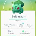 APP, Pokémon GO, 寶可夢資料, #001妙蛙種子/Bulbasaur