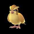 APP, Pokémon GO, 寶可夢圖片, #016 波波/Pidgey